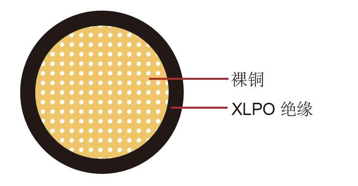 SGX 美标汽车电缆