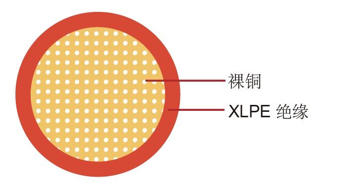 WXC 美标汽车电缆